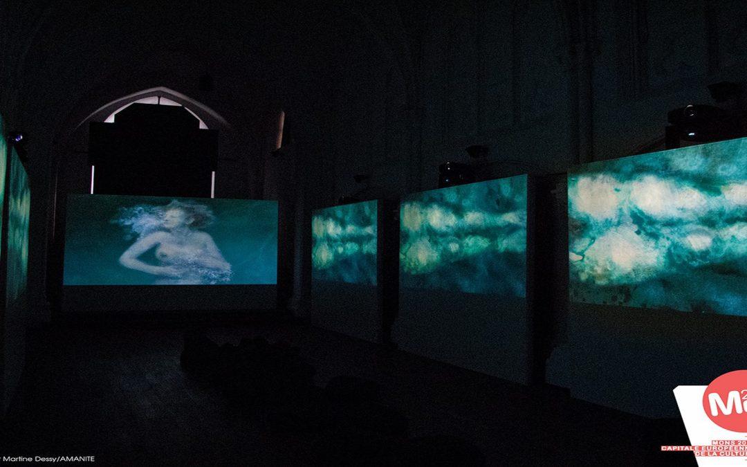 Immersion Virtuelle Martine Dessy
