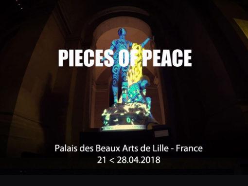 Mapping Objet Interactif – PALAIS DES BEAUX ARTS DE LILLE – Mars 2018