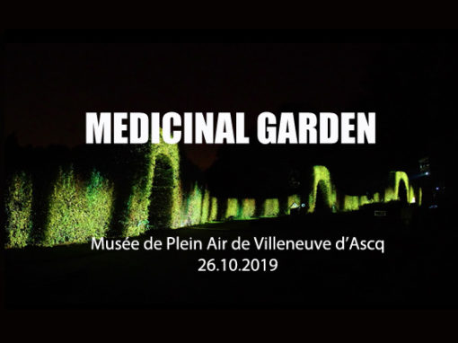 Mapping végétal – Musée plein Air de Villeneuve d'Ascq – Octobre 2019
